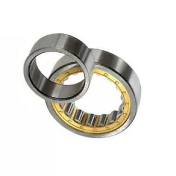 Ceramic Stainless Steel Ball and Roller Bearing Ss608 Ss609 Ss625 Ss626 Ss688 Ss695 Ss6301 Ss6302 (SSUC204 SSUC205 SSUC209 SSUC206 SSUC208)